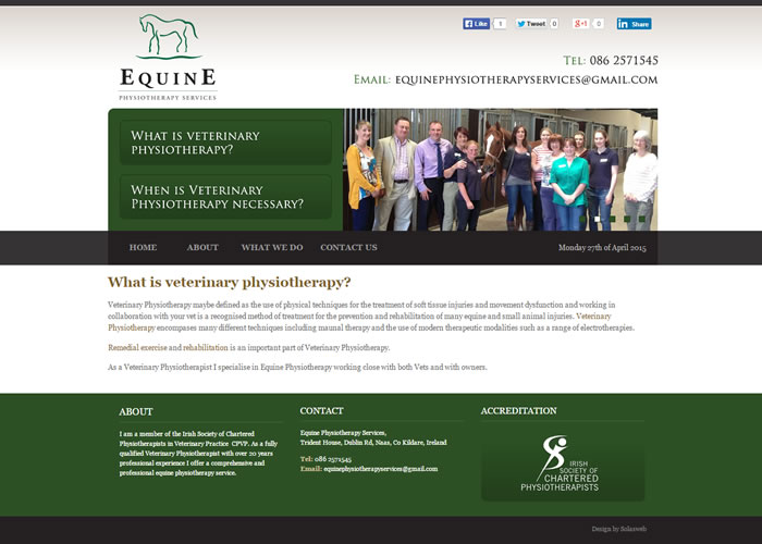 Equine Physiotherapy Services